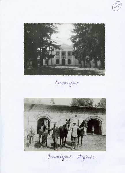 Plik:Czerniejow Palace and Stable.jpeg